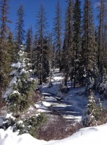 Durango winter scene